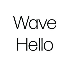Wave Hello Inc