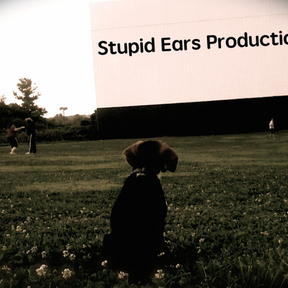 Stupid Ears  Productions