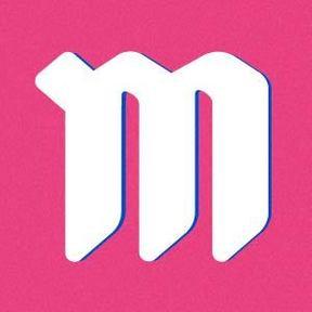 Meister LLC