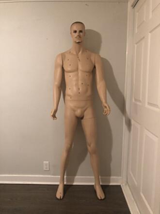 Mannequinn