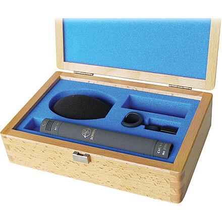 Schoeps CMC641 Set Colette Series Supercardioid Microphone Set (Gray)