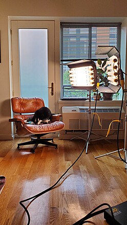 Kino Flo DMX 4Bank Select Lighting System - Interview Kit (2-Unit)